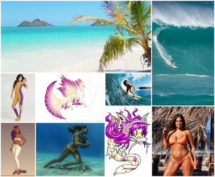 Draiphin Inspiration Collage by rosemmaryy