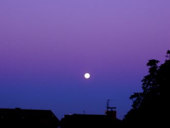 White moon - purple sky by Adela555