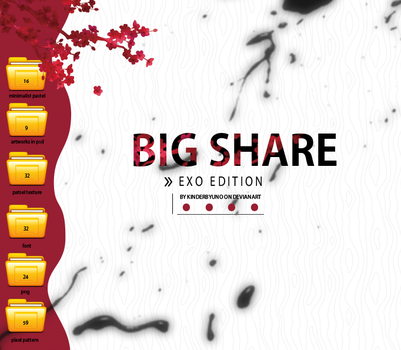 BIG SHARE - EXO EDITION by KinderByuno