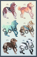 Adoptables- Auction [Open] - PRICES REDUCED by Utulivu