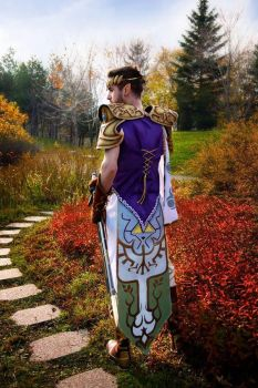 Princess Zelda - Male cosplay by Artif-X