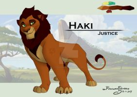 Haki - Adult version character sheet by R-FakonWolf