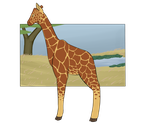 Botanica Zoo || Reticulated Giraffe || Clyde by LadyPipen