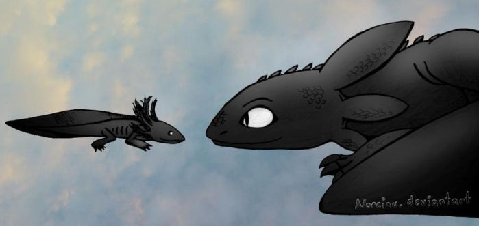 How To Train Your Drag..olotl? by Norcinu
