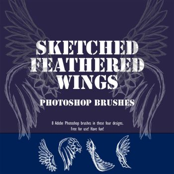 Sketched Feather Wing Brushes by DeadWizard