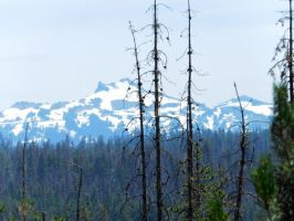 Oregon Mountain Stock 1 by Carol-Moore