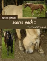 Horse pack - 01 by LunaNYXstock