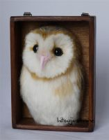 Needle felted Barn Owl 2-1 by sheeps-wing