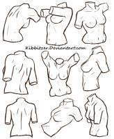 Female Torso Reference Sheet by Kibbitzer