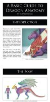 A Basic Guide to Dragon Anatomy by BritneyPringle