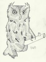 Owl by bebesdupoire