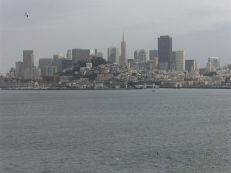 San Francisco by Risto-Blackbolt
