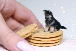 German shepherd puppy 1:12 scale miniature by sugarcharmshop