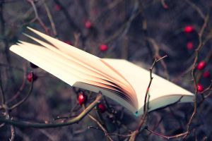 Book of Autumn by sternenfern