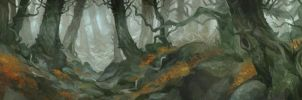 Greatest of the Forests by JonHodgson