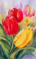 Towering Tulips by rsharts