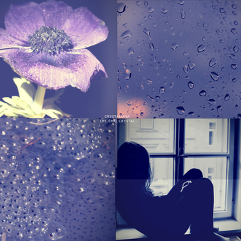 aesthetic #1: |blossom| by snowflake20006