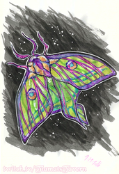 MOTH by tiamat