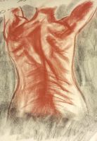 Life Drawing - Muscle Study Female Back by BethanyAngelstar
