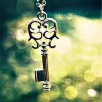 Lock it up by EliseEnchanted