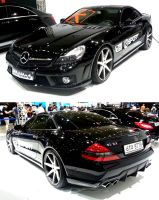 An Exotic Mercedes by toyonda