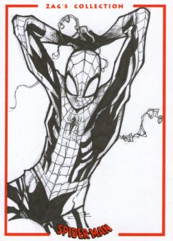 Commission Sketch!!! Spidey!!! by Daniel93Scalisi