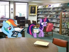 Twilight Sparkle and Rainbow Dash in Library by Paris7500