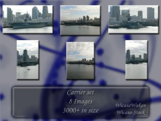 Carrier set by Wicasa-stock