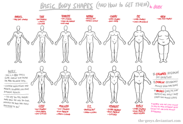 Basic Body Shapes (and How to Get Them) by The-Greys