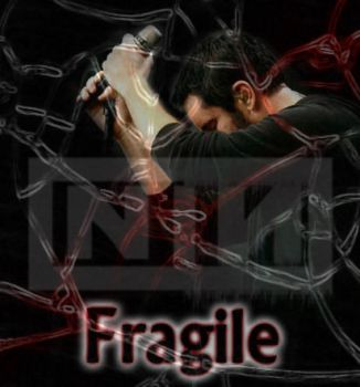 The Fragile by Echoing-The-Sound