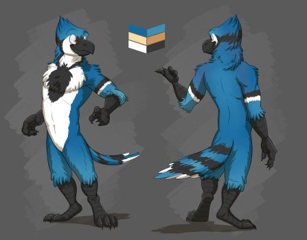 Commission: Blinx's Reference Sheet by Temiree