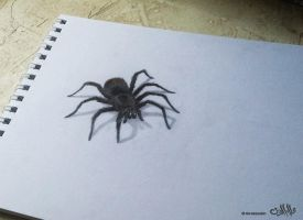 Darwing Spider 3D by alaadin