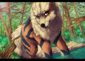 Forest path by LuckyPaw