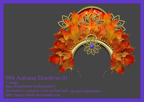 984 Autumn Headress 01 by Tigers-stock