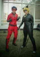 Miraculous Ladybug and Cat Noir by 93FangShadow