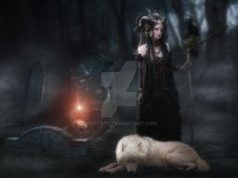 Wolfes Lady by mrscats