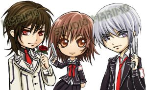 Vampire Knight by studiomarimo