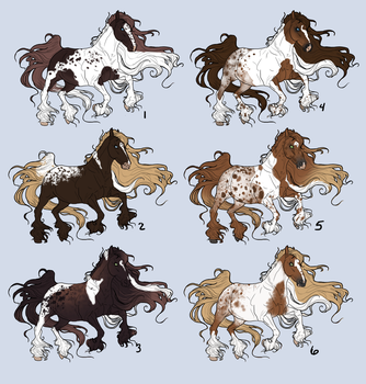[ADOPTABLES] The Chestnut Pintaloosa Collection by The-Vandalist