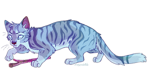 Jayfeather by meow286