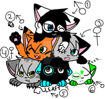 6 Kittens For Adoption!! by MoonLilyArt