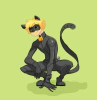 Chat Noir by EternalDayDreams