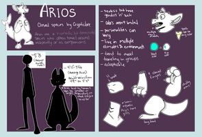 Arios Anatomy by CrypticLore