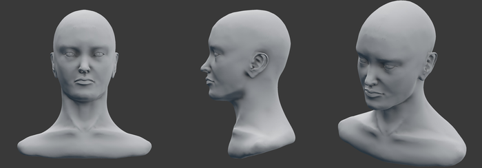 female face sculpt by Master-Flaccid