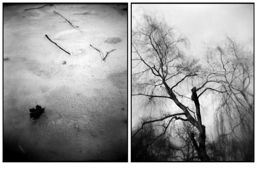 diptych_h 02 by marfia