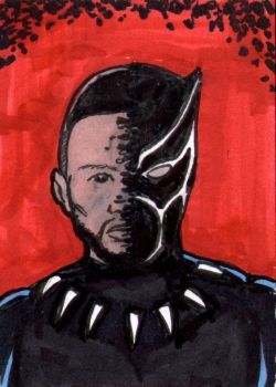 Black Panther ECCC Sketch Card by pjperez