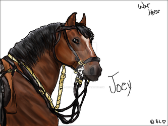 War Horse Joey (with no background) by SeeYaOnSondee