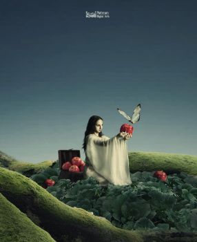 Apple Sacrificied to a Butterfly by IsalRahman