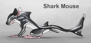 [CLOSED] Adopt Auction : Shark Mouse by BelieveTheHorror