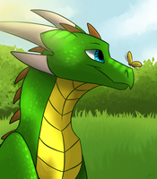Midday Meadows by Eclirra