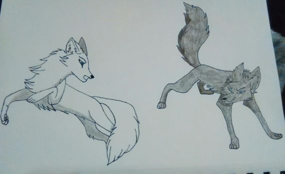 Wolfs by KiraTheDemonlord